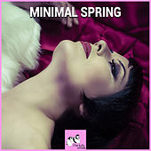 Minimal Spring by Various Artists