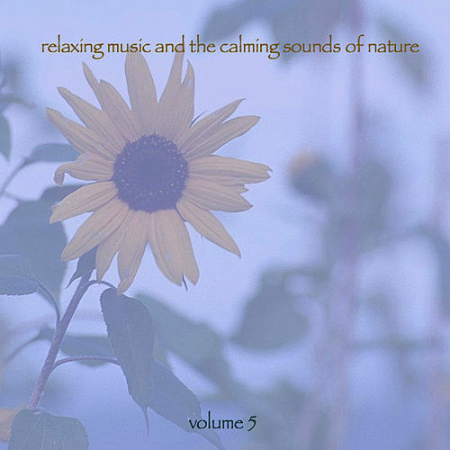 Play & Download Relaxing Music & The Calming Sounds Of Nature - Volume 5 by Music For Meditation | Napster