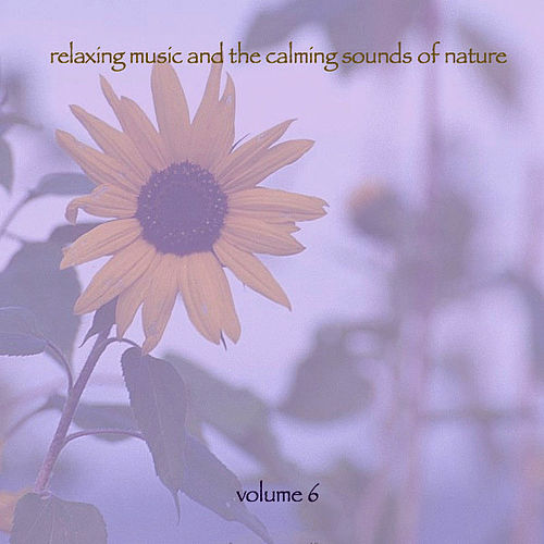 Play & Download Relaxing Music & The Calming Sounds Of Nature - Volume 6 by Music For Meditation | Napster