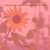 Relaxing Music & The Calming Sounds Of Nature - Volume 7 by Music For Meditation