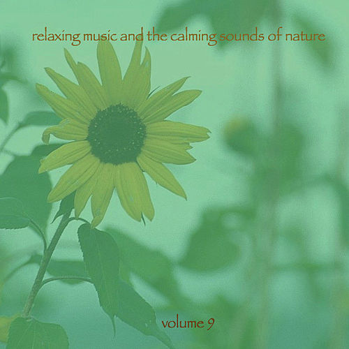Play & Download Relaxing Music & The Calming Sounds Of Nature - Volume 9 by Music For Meditation | Napster