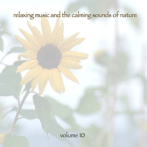 Play & Download Relaxing Music & The Calming Sounds Of Nature - Volume 10 by Music For Meditation | Napster