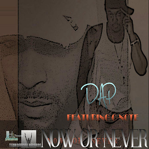 Now or never by Dap