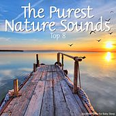 Play & Download The Purest Nature Sounds - Top 8 by Various Artists | Napster