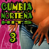 Cumbia Norteña Hits 3 by Cumbia Sabrosa