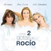 Como Dos Gotas de Rocio by Various Artists