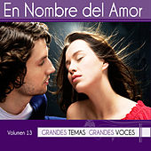 Play & Download Grandes Temas Grandes Voces Vol. 13 by Various Artists | Napster