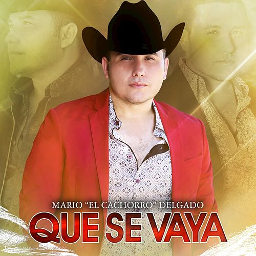 Play & Download Que Se Vaya by Mario