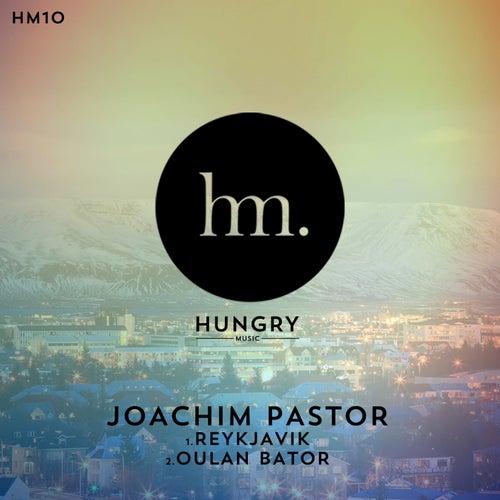 Reykjavik by Joachim Pastor