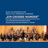 Play & Download Bruch, Liszt, Herrmann, Schroeder: