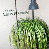 Play & Download När du drunknar by Terra | Napster