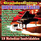 Play & Download 15 Grandes Éxitos Instrumentales by Various Artists | Napster
