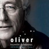 Kozmički Dalmatinac by Oliver Dragojevic