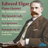 Play & Download Piano Quintet; The Spanish Lady; La Capricieuse; Serenade Op. 20 by Various Artists | Napster
