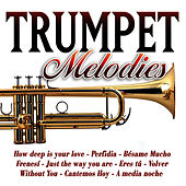 Trumpet Melodies by Trumpet Gold