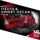 What You're Waiting For by Tiësto