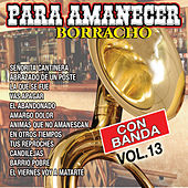 Para Amanecer Borracho, Vol. 13 by Various Artists