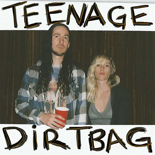 Teenage Dirtbag by Walk off the Earth