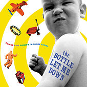 Play & Download The Bottle Let Me Down by Various Artists | Napster