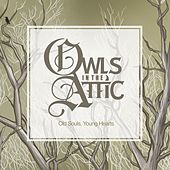 Play & Download Old Souls, Young Hearts by Owls In the Attic | Napster