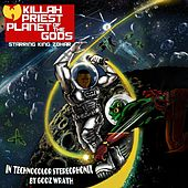 Play & Download Planet of the Gods by Killah Priest | Napster
