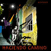 Play & Download Haciendo Camino by Ricardo Montaner | Napster