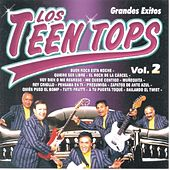 Los Teen Tops  Grandes Exitos Vol. 2 by Los Teen Tops