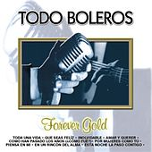 Play & Download Forever Gold  Todo Boleros by Various Artists | Napster