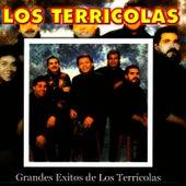 Play & Download Grandes Exitos de los Terricolas by Los Terricolas | Napster