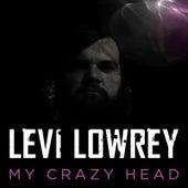 My Crazy Head by Levi Lowrey