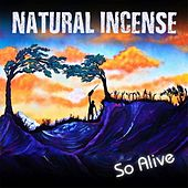 Play & Download So Alive by Natural Incense | Napster