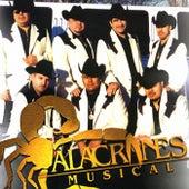 Puro Tamborazo Alacranero by Alacranes Musical
