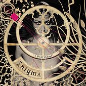 Play & Download A Posteriori (Private Lounge Remix) by Enigma | Napster