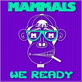 Play & Download We Ready by The Mammals | Napster