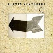 Play & Download Cidade Veloz by Flavio Venturini | Napster