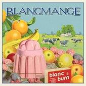 Blanc Burn van Blancmange