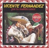 Play & Download Por Tu Maldito Amor by Vicente Fernández | Napster