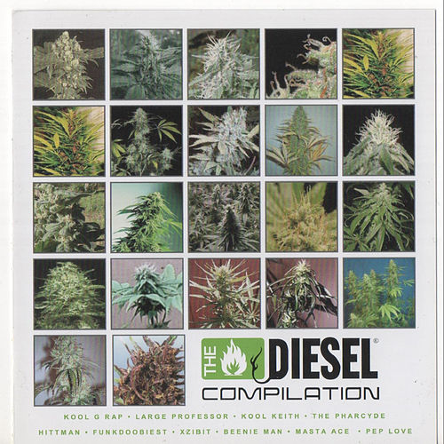 Play & Download Diesel Compilation: Sickbay Records by Various Artists | Napster