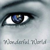 Wonderful World by Studio All Stars