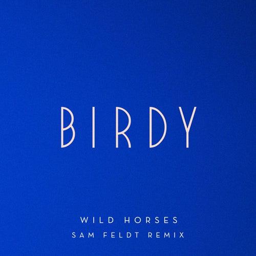 Wild Horses (Sam Feldt Remix) von Birdy