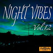 Play & Download Night Vibes, Vol. 12 by Arno | Napster