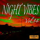 Play & Download Night Vibes, Vol. 14 by Arno | Napster