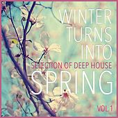 Play & Download Winter Turns Into Spring, Vol. 1 - Selection of Deep House by Various Artists | Napster