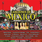 Play & Download Canciones de Mexico Vol. XIII by Various Artists | Napster