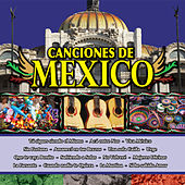 Play & Download Canciones de Mexico Vol. XIX by Various Artists | Napster