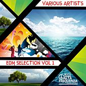 Play & Download EDM Selection, Vol. 1. by Various Artists | Napster