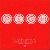 PIGH (feat. Dani Rogosic) by Gashunters