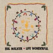 Life Wonderful by Hal Walker