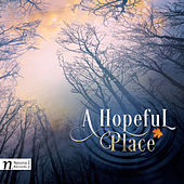 Play & Download Dan Redfeld: A Hopeful Place by Kristi Holden | Napster