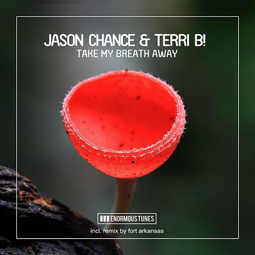 Take My Breath Away by Jason Chance